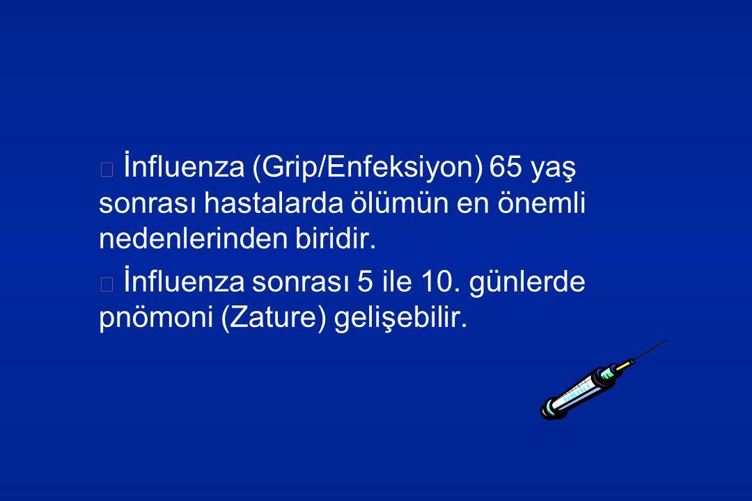 İnfluenza (Grip/Enfeksiyon) 65 yaş sonrası hastalarda ölümün en önemli nedenlerinden biridir.