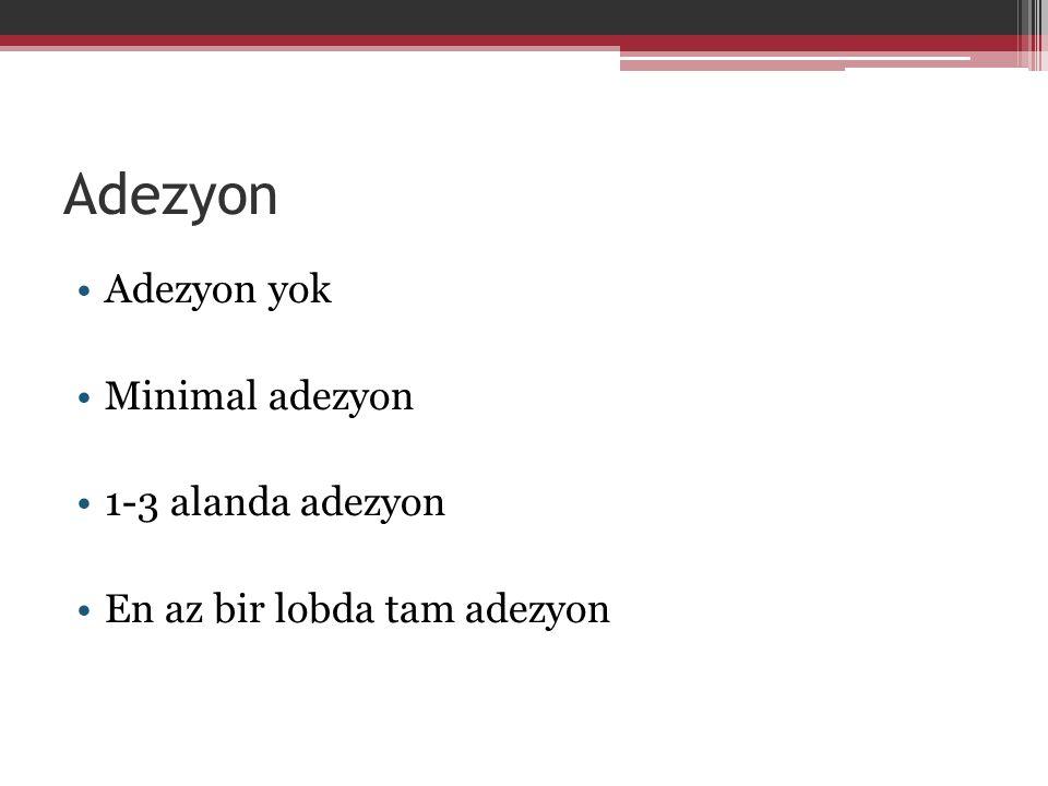 Adezyon Adezyon yok Minimal adezyon 1-3 alanda adezyon