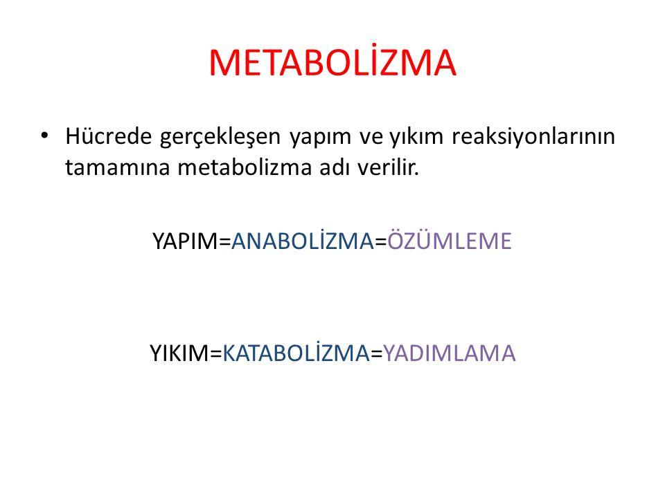 METABOLİZMA Hücrede gerçekleşen yapım ve yıkım reaksiyonlarının tamamına metabolizma adı verilir. YAPIM=ANABOLİZMA=ÖZÜMLEME.