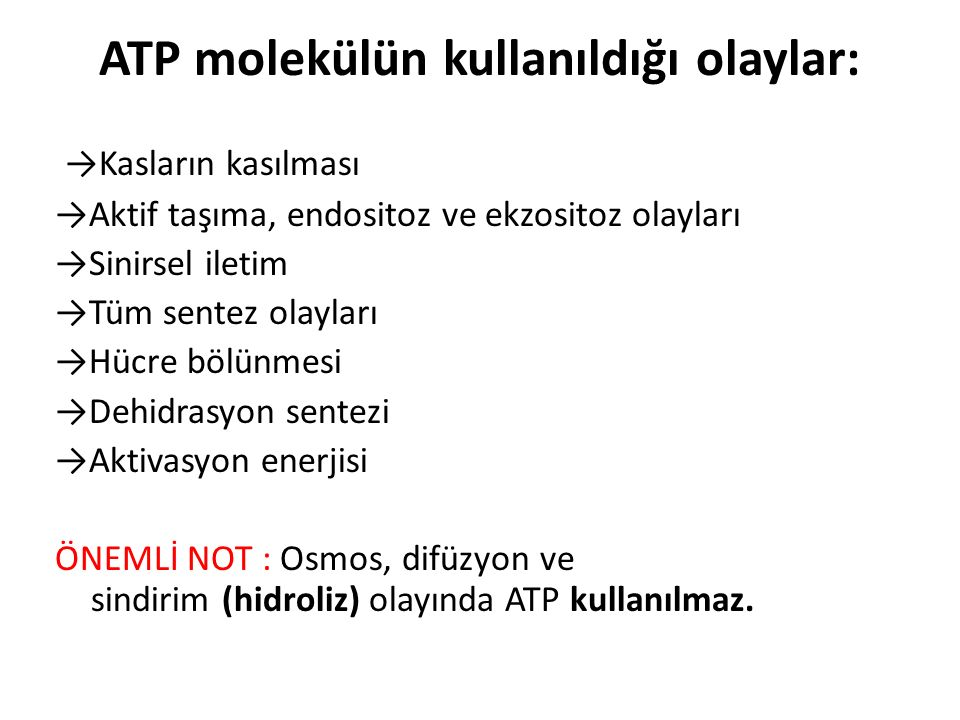 ATP molekülün kullanıldığı olaylar: