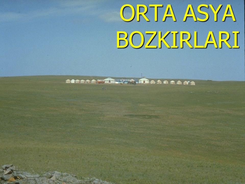 ORTA ASYA BOZKIRLARI www.sunuindir.com