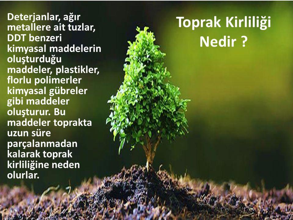 Toprak Kirliliği Nedir