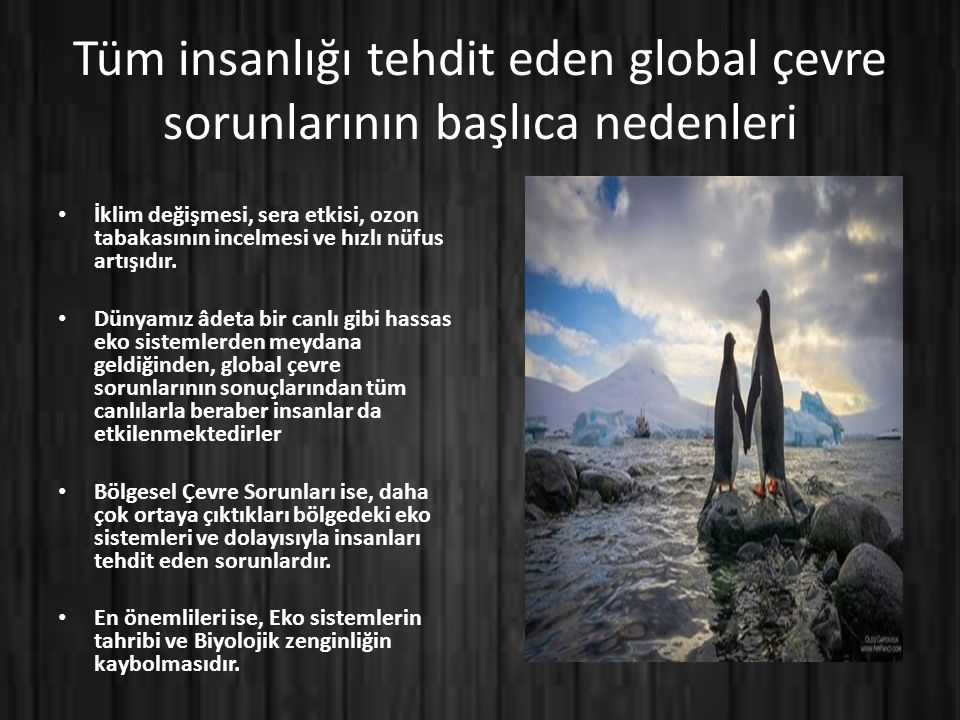 Tüm insanlığı tehdit eden global çevre sorunlarının başlıca nedenleri