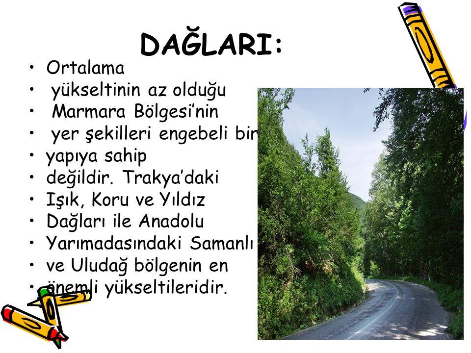 DAĞLARI: Ortalama yükseltinin az olduğu Marmara Bölgesi'nin