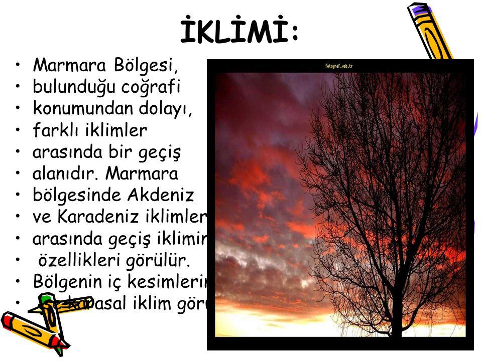 İKLİMİ: Marmara Bölgesi, bulunduğu coğrafi konumundan dolayı,