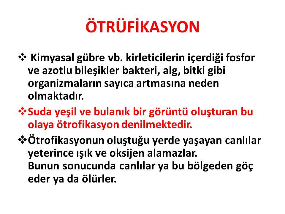 ÖTRÜFİKASYON
