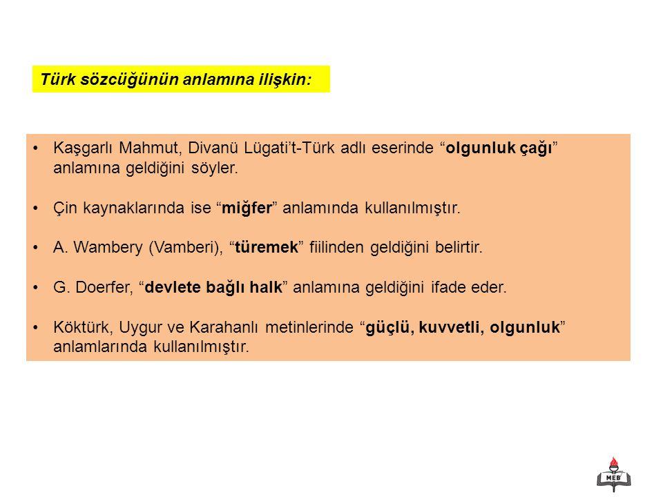 Türk sözcüğünün anlamına ilişkin: