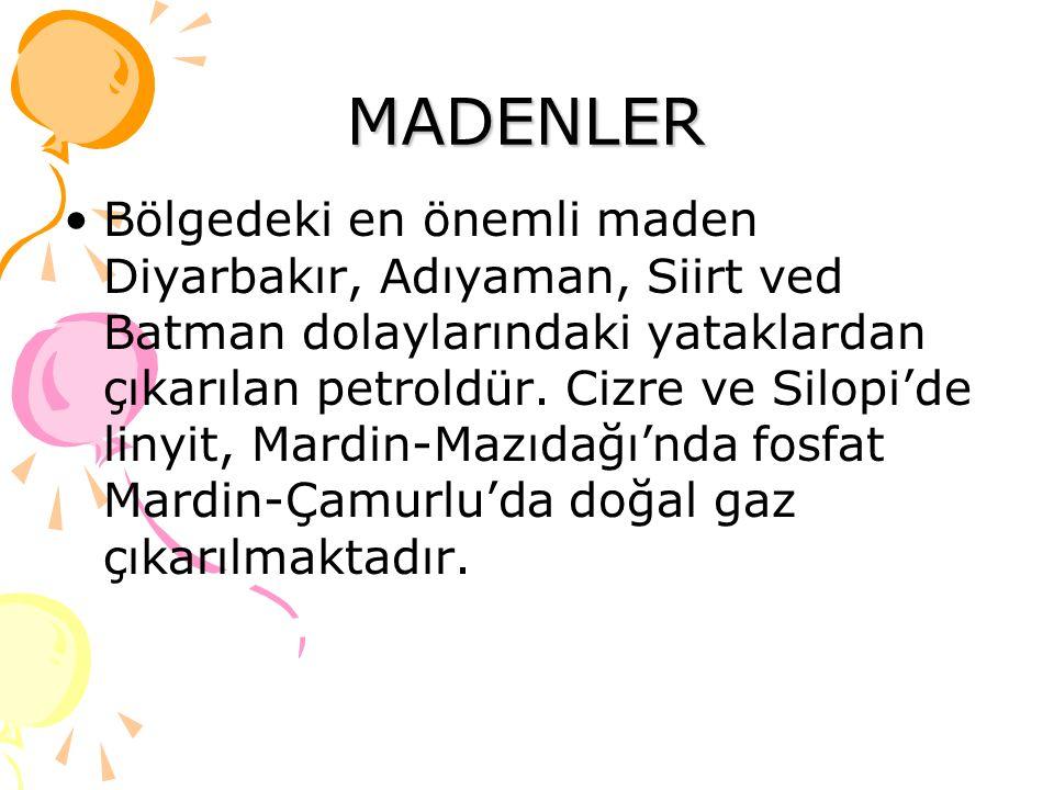 MADENLER