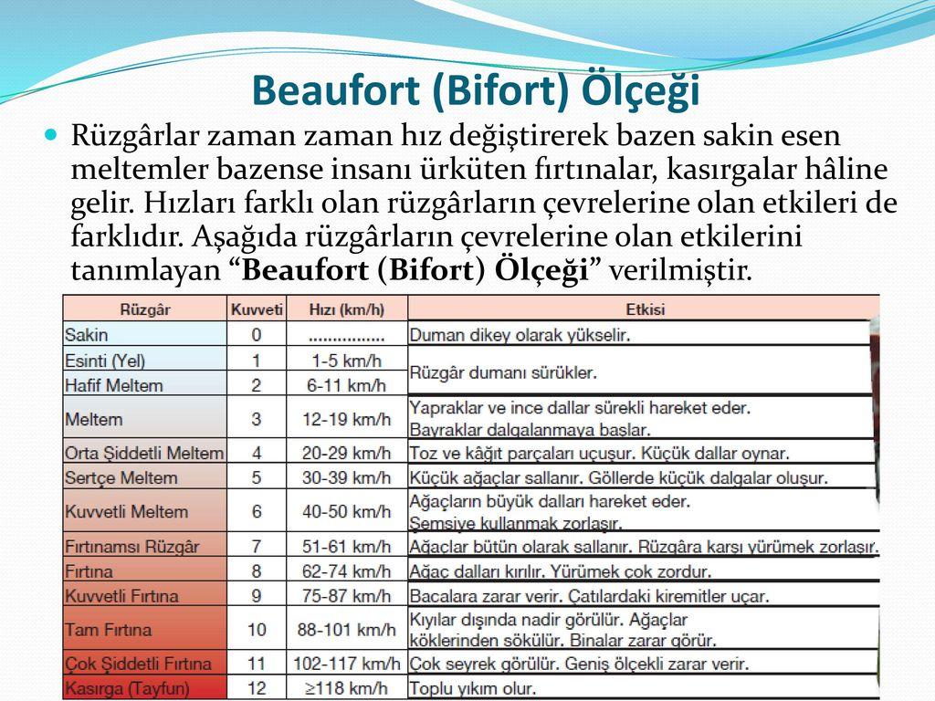 Beaufort (Bifort) Ölçeği