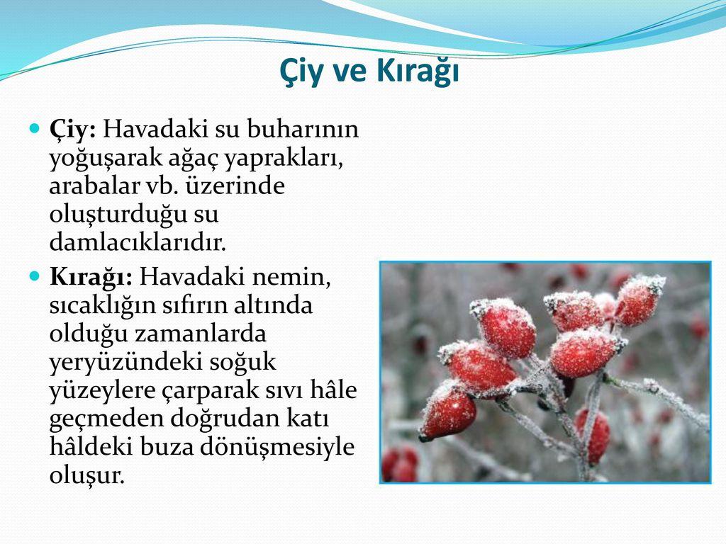 Çiy ve Kırağı Çiy: Havadaki su buharının yoğuşarak ağaç yaprakları, arabalar vb. üzerinde oluşturduğu su damlacıklarıdır.