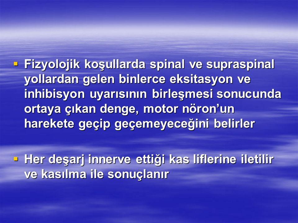 Fizyolojik koşullarda spinal ve supraspinal yollardan gelen binlerce eksitasyon ve inhibisyon uyarısının birleşmesi sonucunda ortaya çıkan denge, motor nöron'un harekete geçip geçemeyeceğini belirler