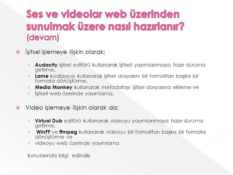 Ses ve videolar web üzerinden sunulmak üzere nasıl hazırlanır (devam)