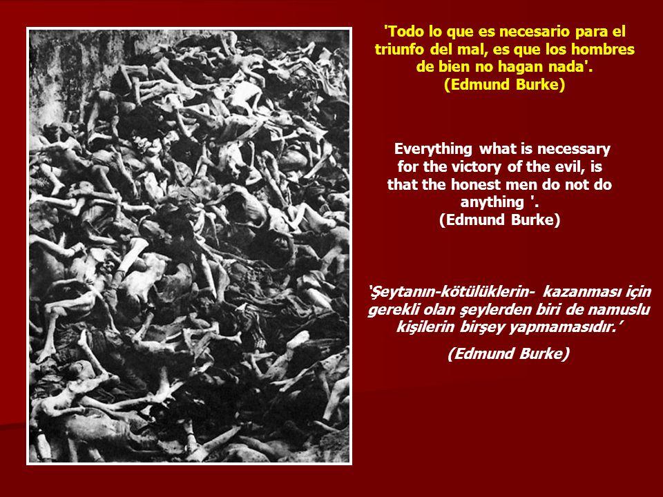 Todo lo que es necesario para el triunfo del mal, es que los hombres de bien no hagan nada .