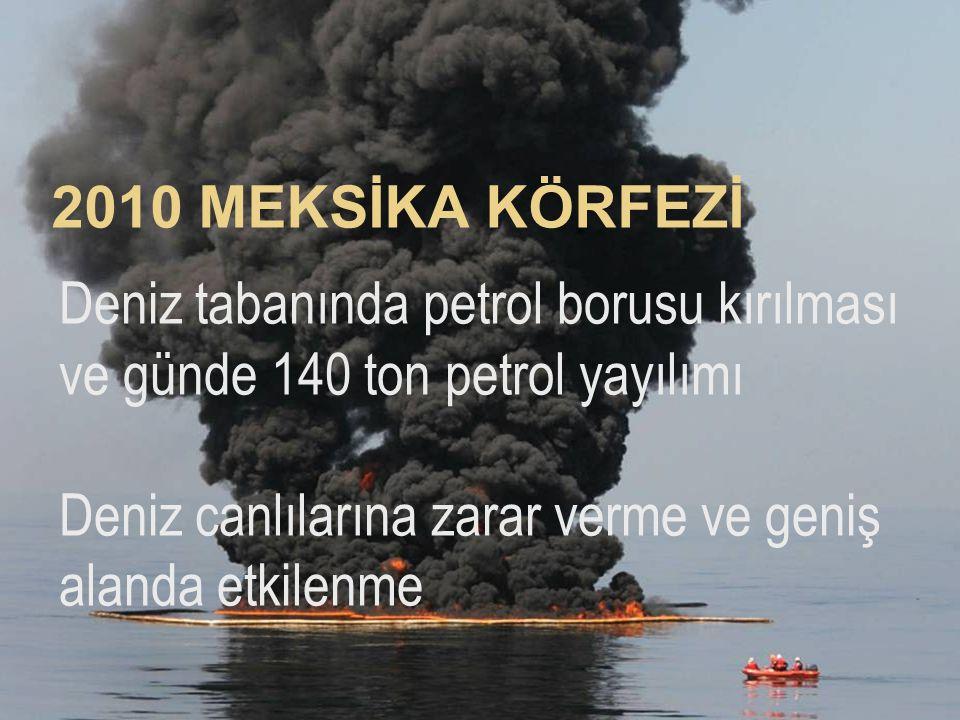 2010 MEKSİKA KÖRFEZİ Deniz tabanında petrol borusu kırılması ve günde 140 ton petrol yayılımı.