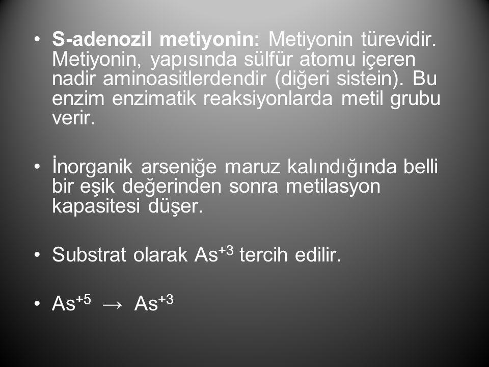 S-adenozil metiyonin: Metiyonin türevidir