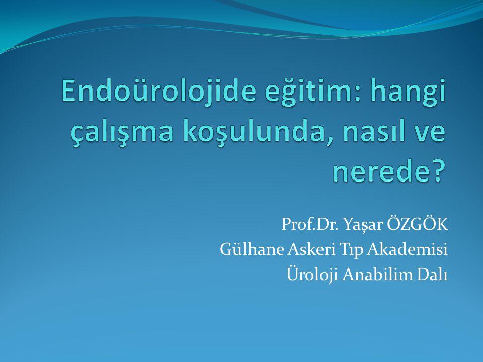 Endoürolojide eğitim: hangi çalışma koşulunda, nasıl ve nerede