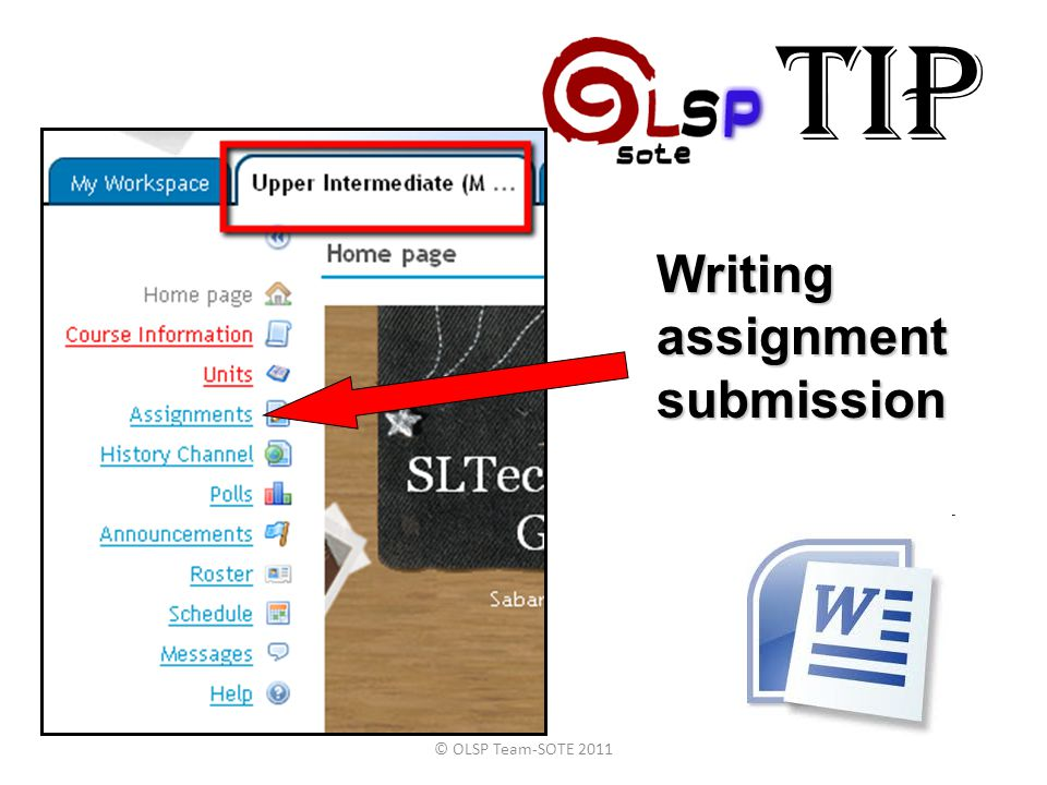 TIP Writing assignment submission © OLSP Team-SOTE 2011