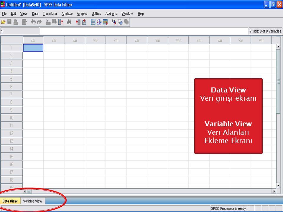 Veri Alanları Ekleme Ekranı