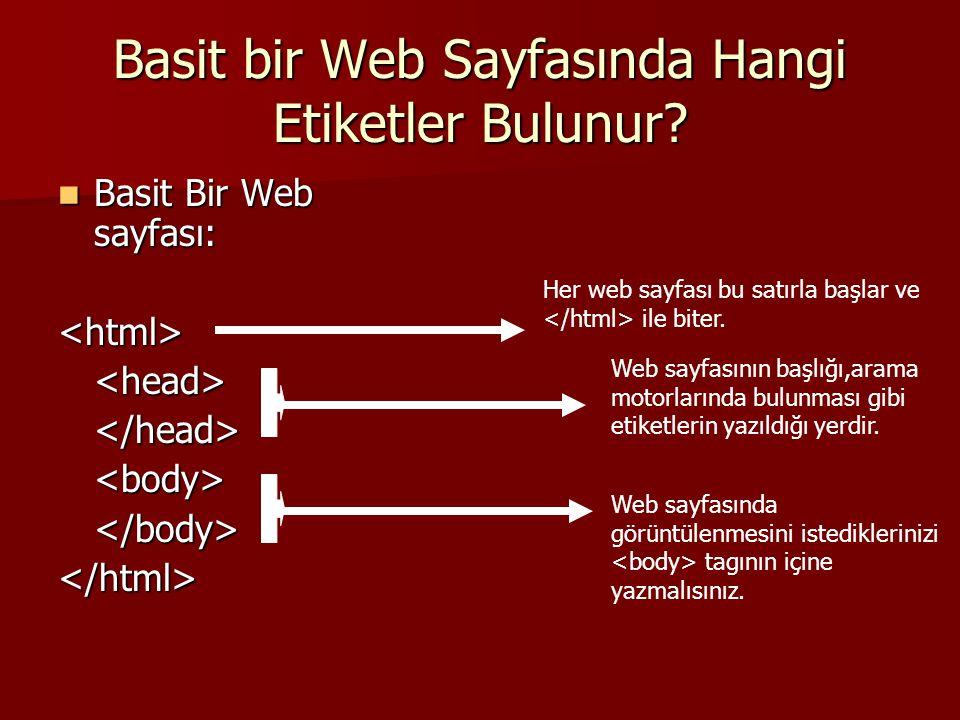 Basit bir Web Sayfasında Hangi Etiketler Bulunur