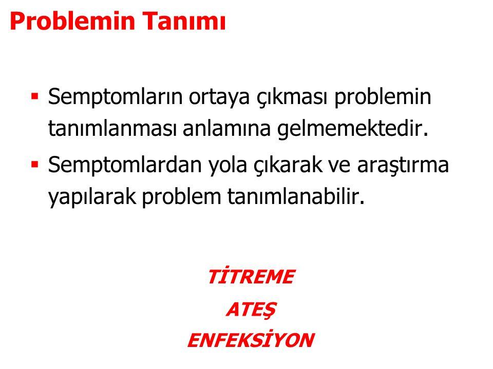 Problemin Tanımı Semptomların ortaya çıkması problemin tanımlanması anlamına gelmemektedir.