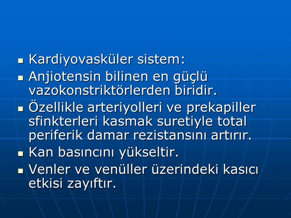 Kardiyovasküler sistem: