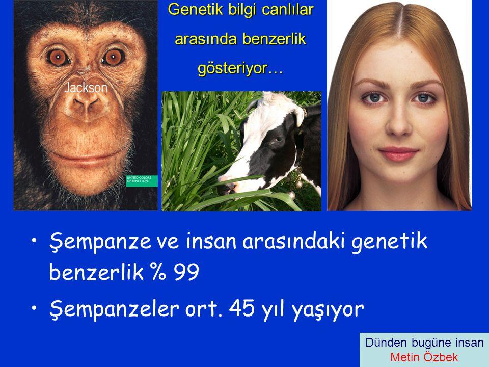 Genetik bilgi canlılar arasında benzerlik gösteriyor…