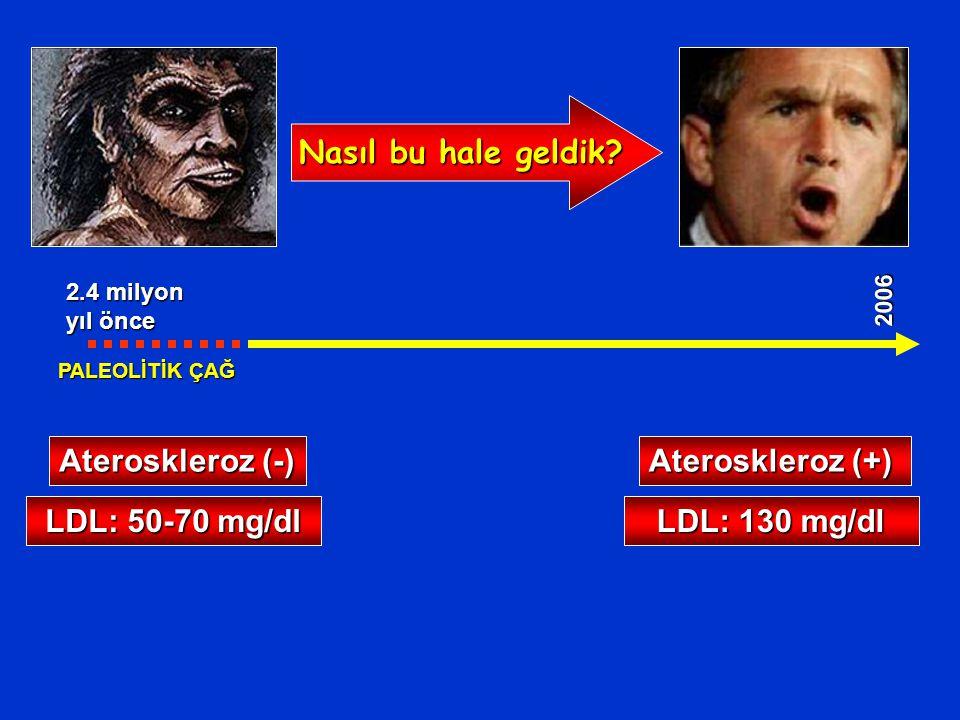 Nasıl bu hale geldik Ateroskleroz (-) Ateroskleroz (+)