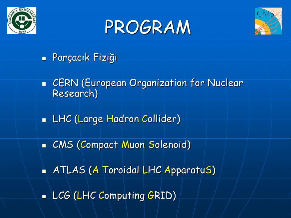 PROGRAM Parçacık Fiziği