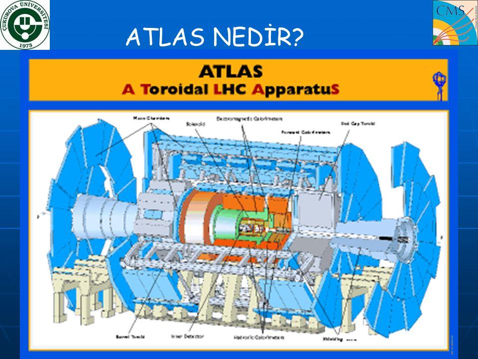 ATLAS NEDİR