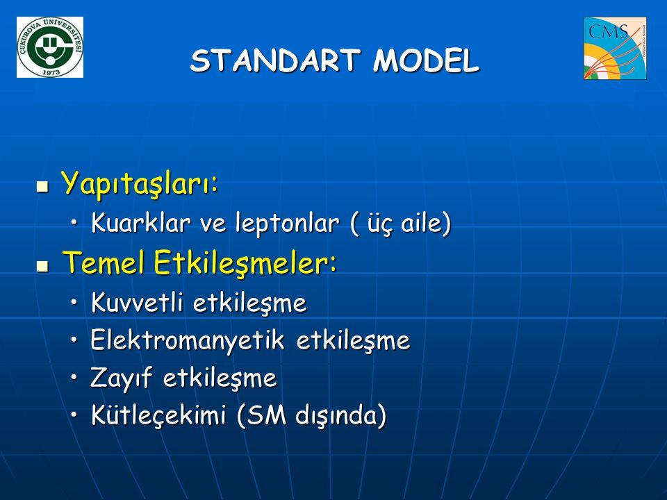 ` STANDART MODEL Yapıtaşları: Temel Etkileşmeler: