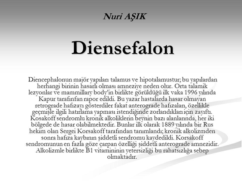 Nuri AŞIK Diensefalon.