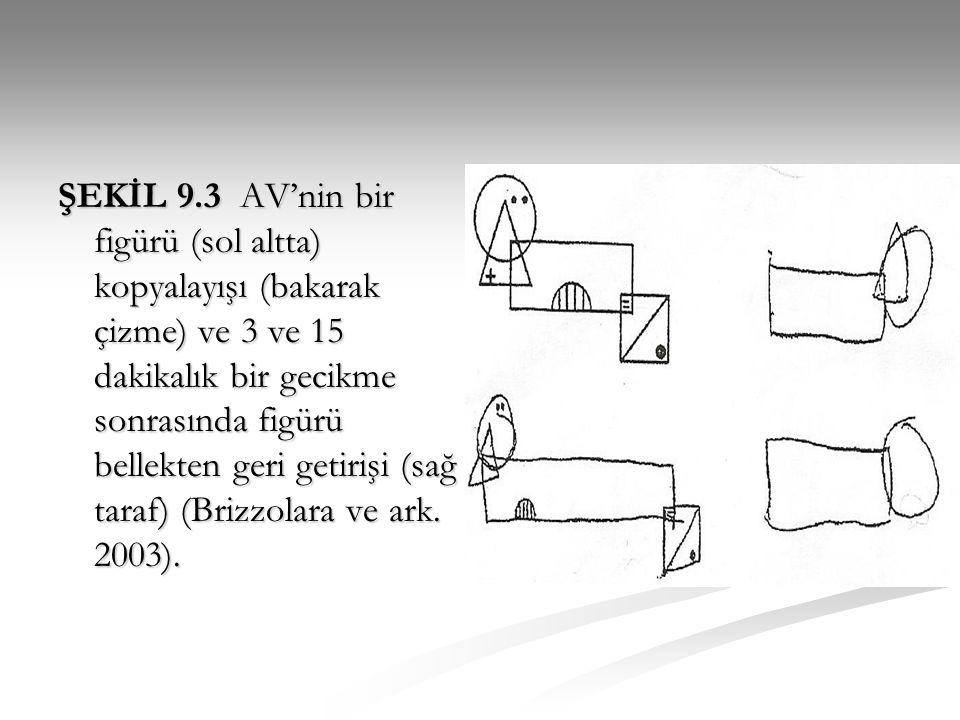 ŞEKİL 9.3 AV'nin bir figürü (sol altta) kopyalayışı (bakarak çizme) ve 3 ve 15 dakikalık bir gecikme sonrasında figürü bellekten geri getirişi (sağ taraf) (Brizzolara ve ark.