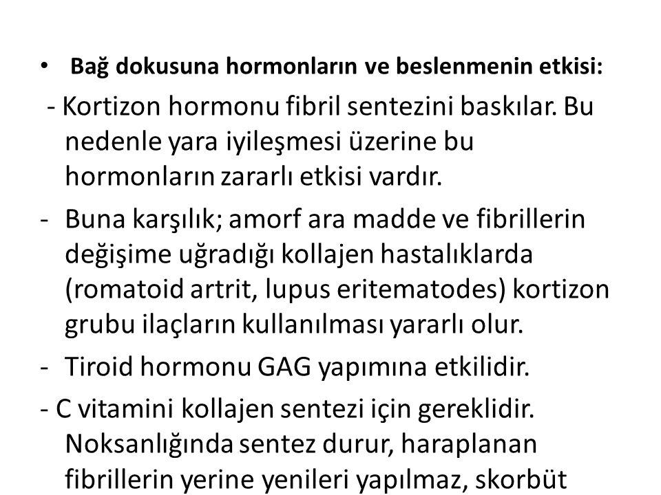 Tiroid hormonu GAG yapımına etkilidir.