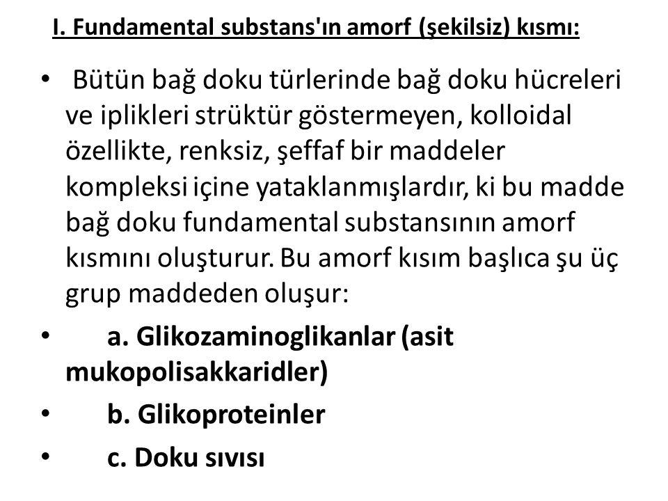 I. Fundamental substans ın amorf (şekilsiz) kısmı: