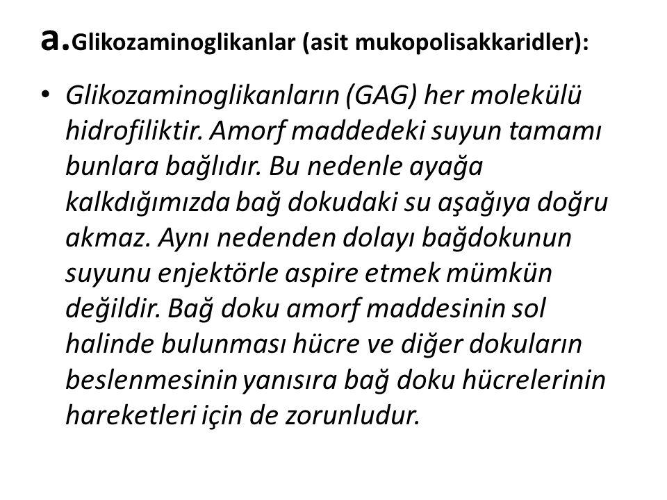 a.Glikozaminoglikanlar (asit mukopolisakkaridler):