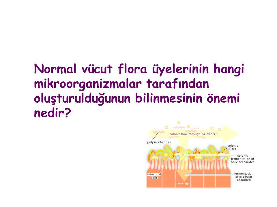 Normal vücut flora üyelerinin hangi mikroorganizmalar tarafından oluşturulduğunun bilinmesinin önemi nedir