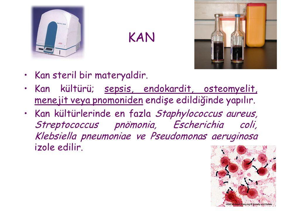 KAN Kan steril bir materyaldir.