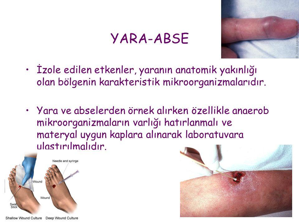 YARA-ABSE İzole edilen etkenler, yaranın anatomik yakınlığı olan bölgenin karakteristik mikroorganizmalarıdır.