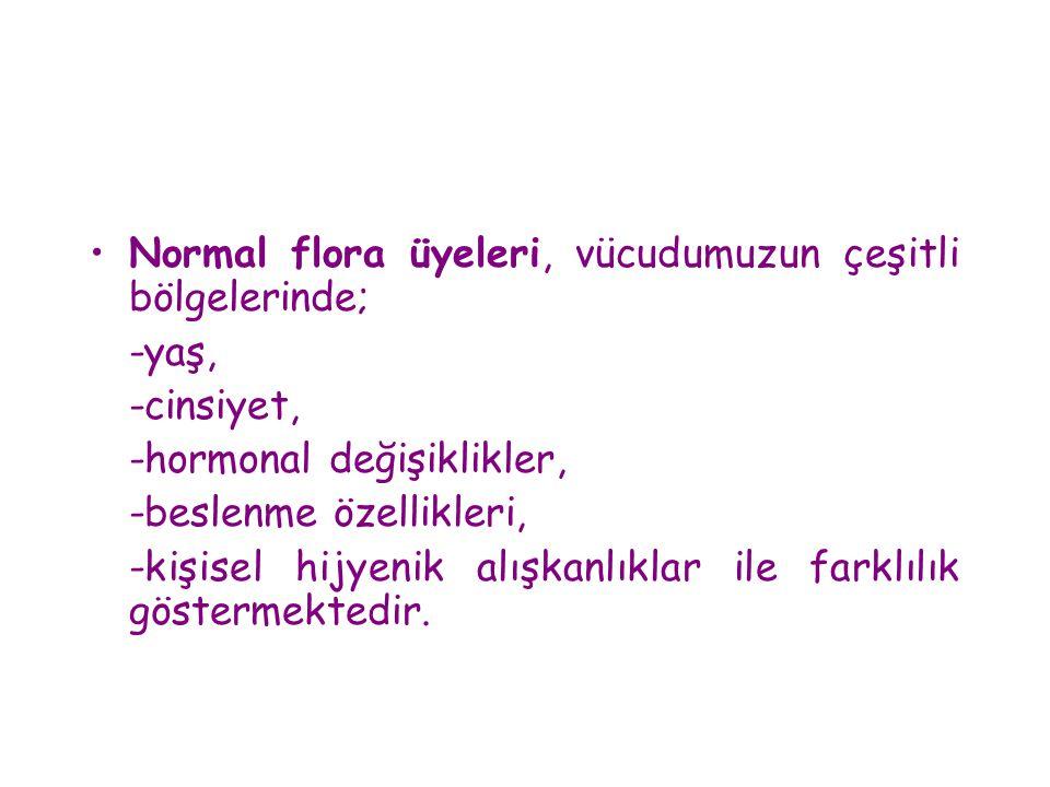 Normal flora üyeleri, vücudumuzun çeşitli bölgelerinde;
