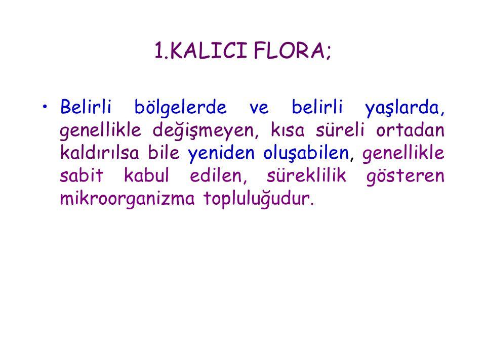1.KALICI FLORA;
