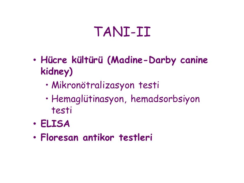 TANI-II Hücre kültürü (Madine-Darby canine kidney)
