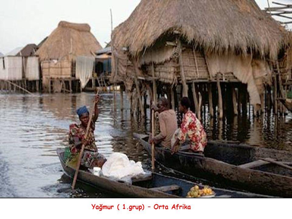 Yağmur ( 1.grup) – Orta Afrika