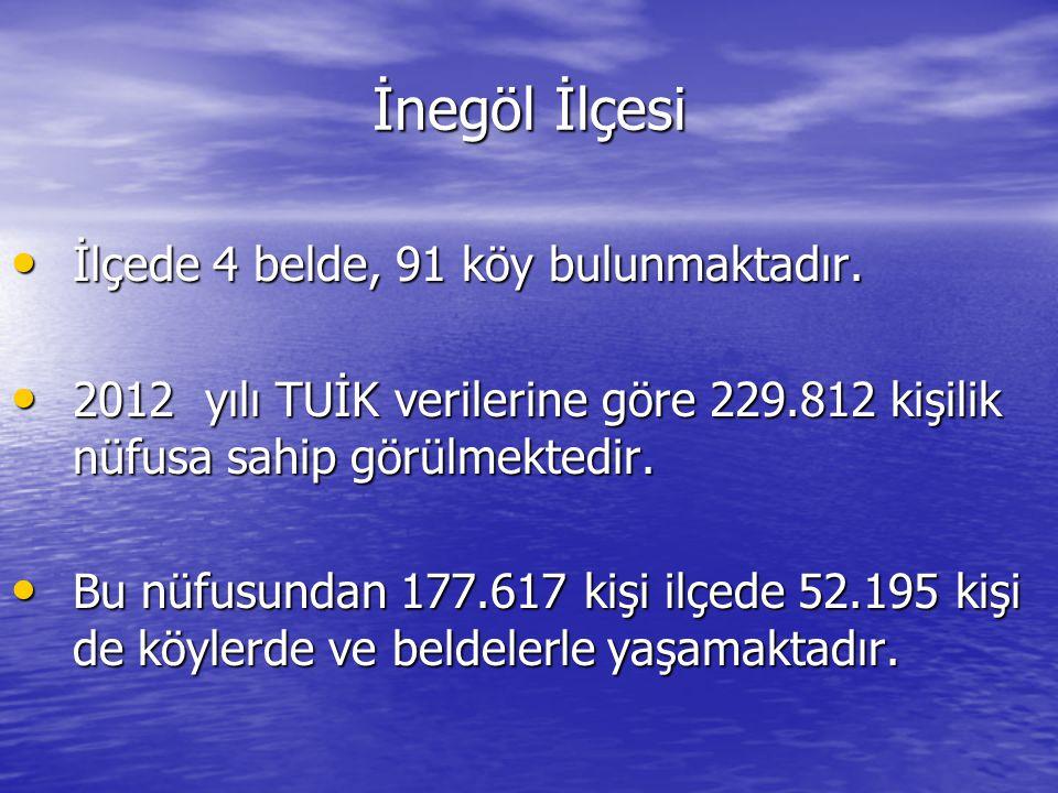 İnegöl İlçesi İlçede 4 belde, 91 köy bulunmaktadır.