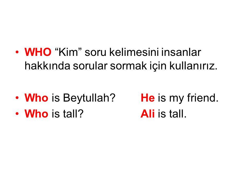 WHO Kim soru kelimesini insanlar hakkında sorular sormak için kullanırız.