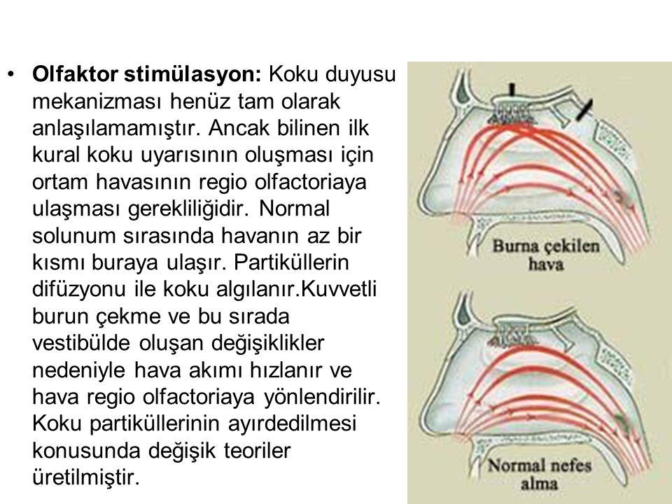 Olfaktor stimülasyon: Koku duyusu mekanizması henüz tam olarak anlaşılamamıştır.