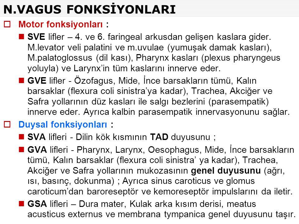 N.VAGUS FONKSİYONLARI Motor fonksiyonları :