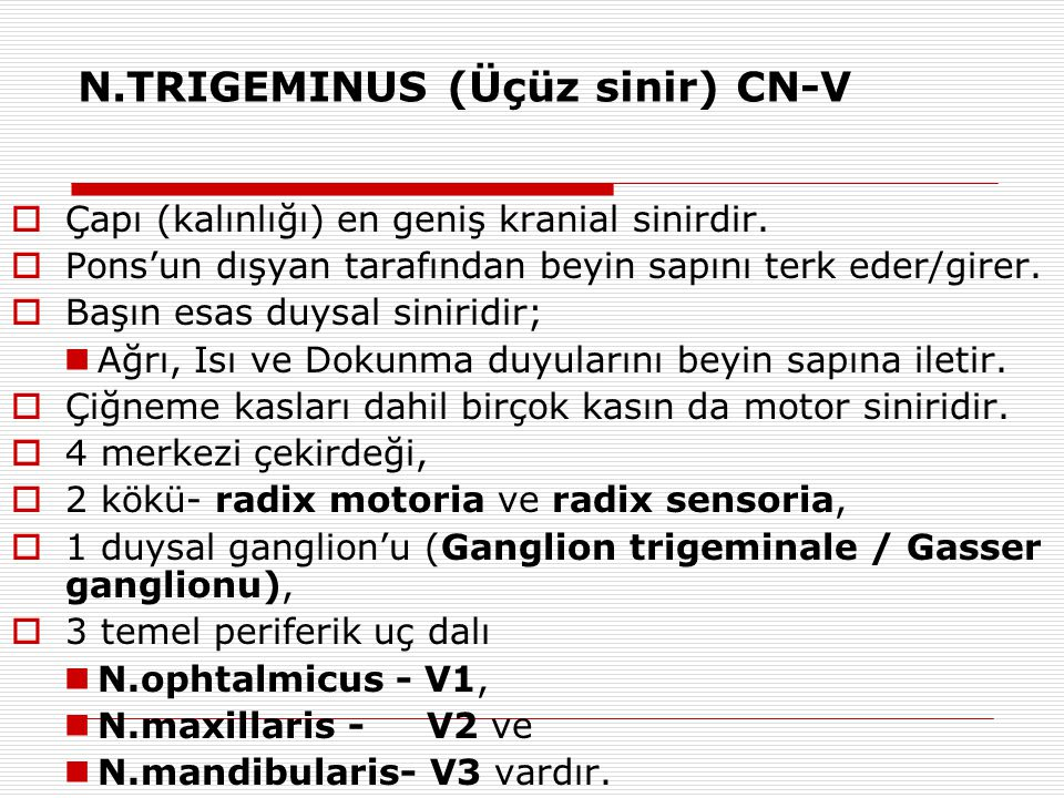 N.TRIGEMINUS (Üçüz sinir) CN-V