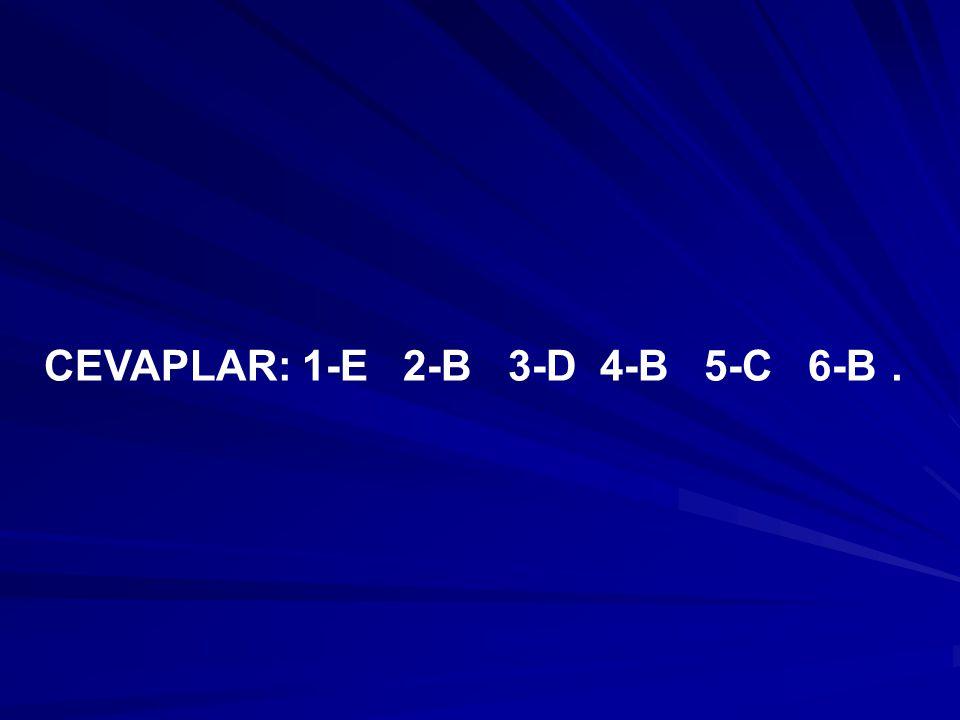 CEVAPLAR: 1-E 2-B 3-D 4-B 5-C 6-B .