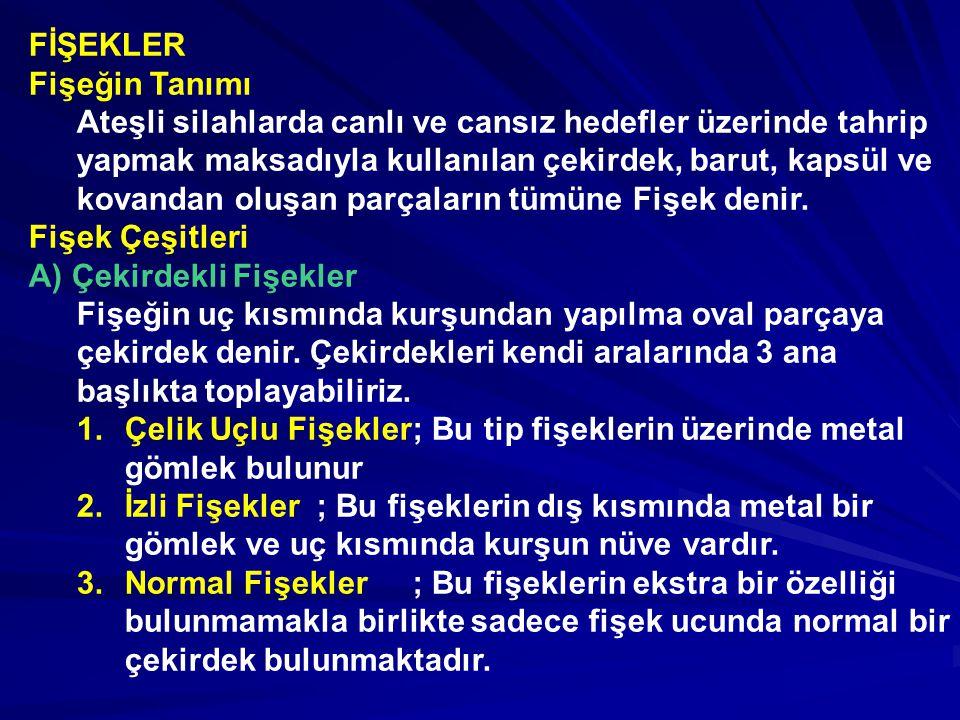 FİŞEKLER