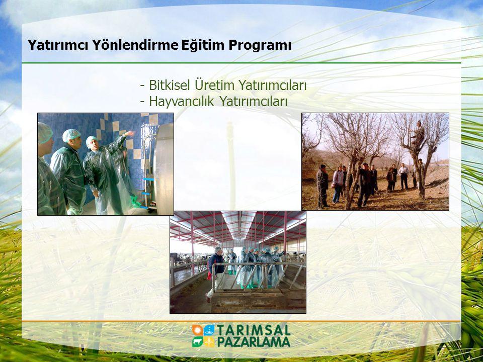 Yatırımcı Yönlendirme Eğitim Programı